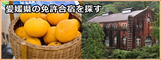 愛媛県の免許合宿を探す