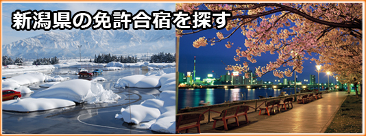 新潟県の免許合宿を探す